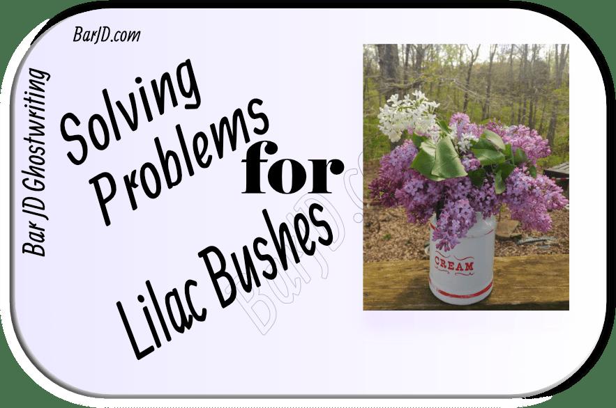 Problem solving for the garden